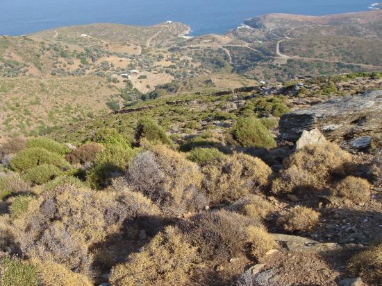 Andros, Grécia: thea mageutiki sto vitali androu hellas
