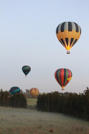 Balloon Aloft Hunter Valley Day Tours : up up and way