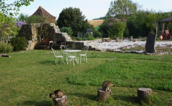 Charente, Frankrig: Front lawn