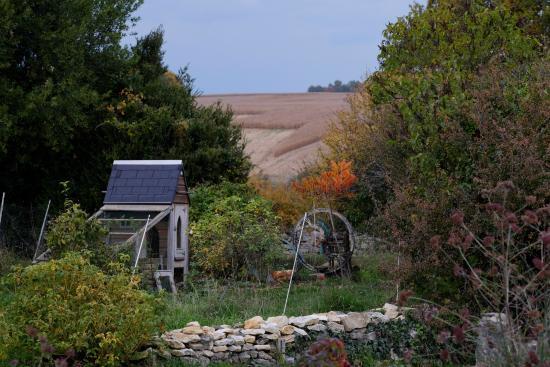 Charente, Frankrig: Chicken 'church'