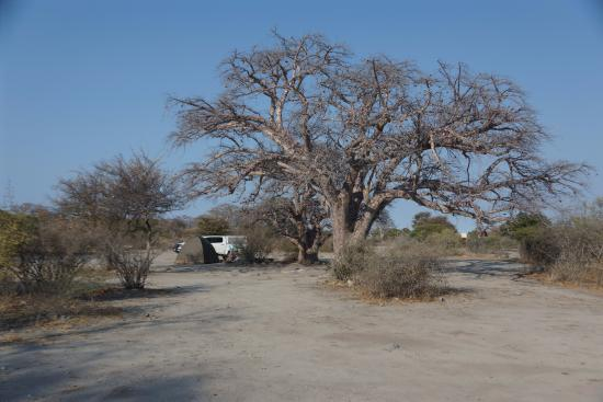 Makgadikgadi Pans National Park Photo