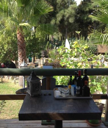 Great Escapes Andalucia: Chalet Tres - view of garden from verandah