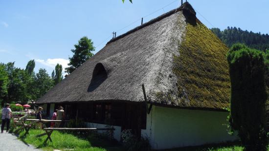 Gutach im Schwarzwald照片