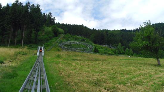 Gutach im Schwarzwald Resmi