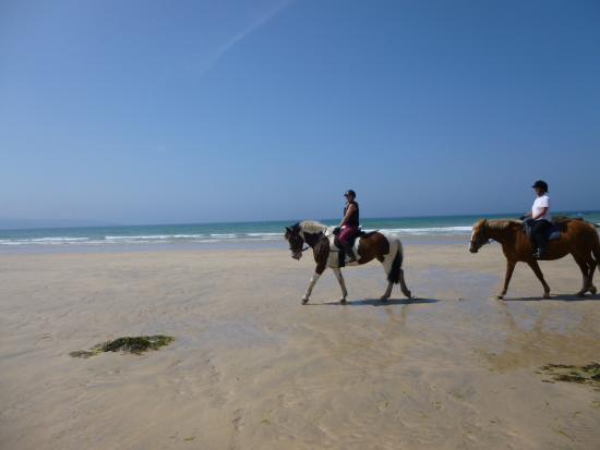 写真Cornish Riding Holidays枚
