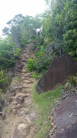 Mahé, Seychellerna: 20160131_171937_large.jpg
