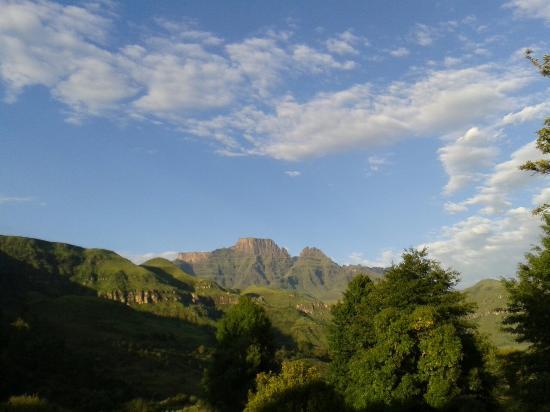 Winterton, Sudáfrica: 20160131_062558_large.jpg