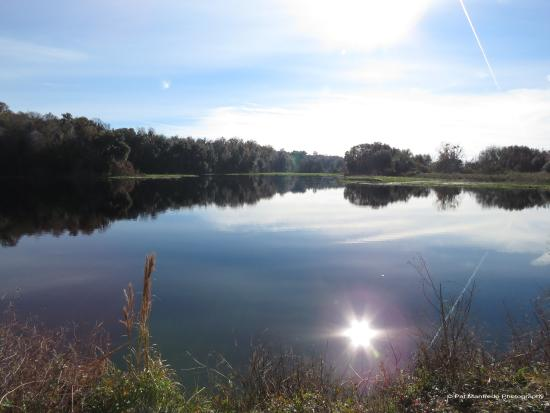 Micanopy, Флорида: La Chua Trail at Paynes Prairie