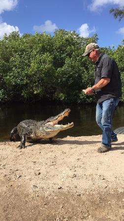 Jungle Erv's Everglades Airboat Tours: Eerst wat marshmallows en dan een visje toe.