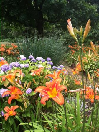 Brewster, MA: Gardens