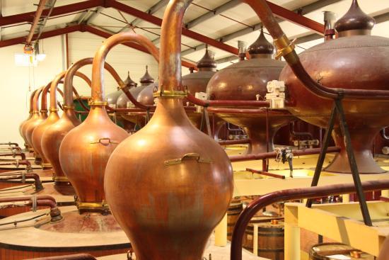 Saint-Pierre-d'Oleron, Francia: La distillerie de Saint Georges d'Oléron