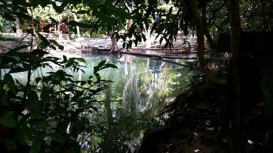 Catfish Farm - Picture of Catfish Farm, Ao Nang - TripAdvisor