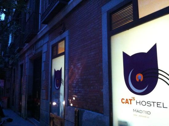 Cat's Hostel Photo