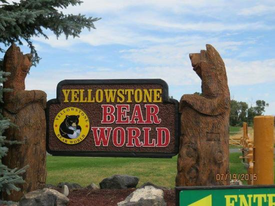 Rexburg, ID: Yellowstone Bear World