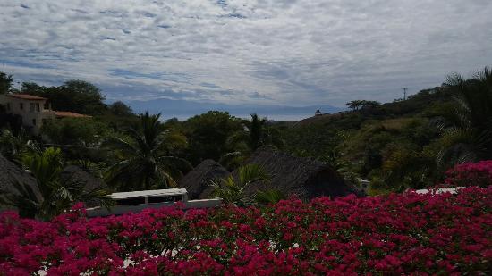 La Cruz de Huanacaxtle, Мексика: 20160130_182837_002_large.jpg