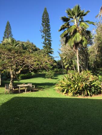 Haiku, Hawái: photo0.jpg