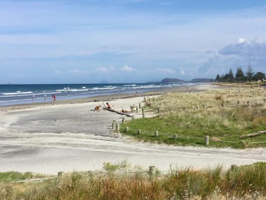 Bay of Plenty Region, Yeni Zelanda: photo0.jpg