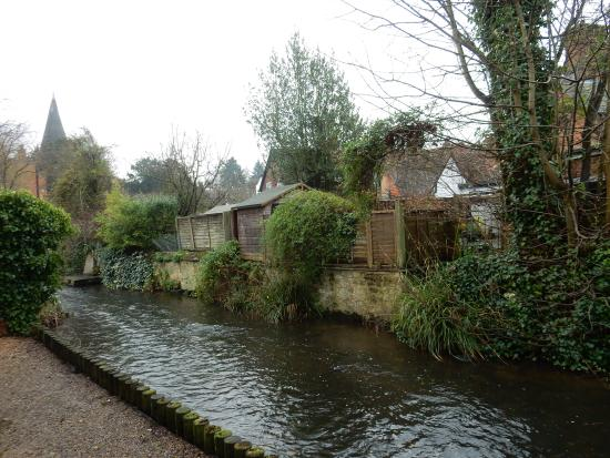 Shere, UK: View from Apartment