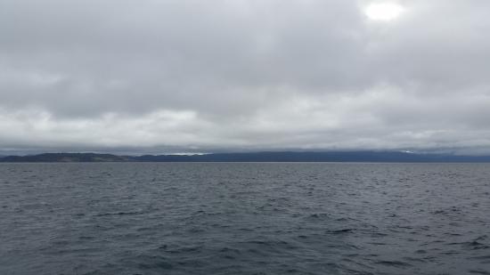 Stewart Island照片