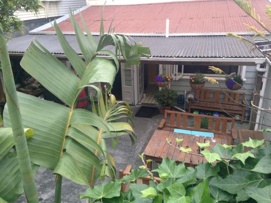 Brown Kiwi Backpacker Hostel: Courtyard