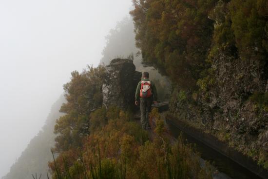 Levada do Alecrim | Rabaçal, Madeira, Portugal