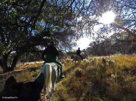 Benson, Αριζόνα: Beatiful riding trails at Double R Guest Ranch