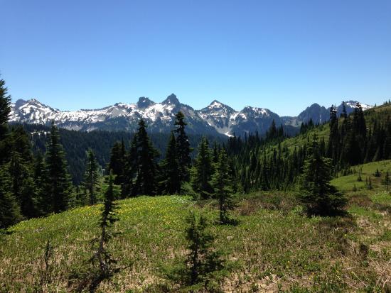 Foto de Mount Rainier