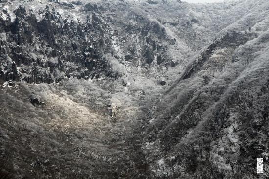 Hallasan National Park: 병풍바위 맞은편