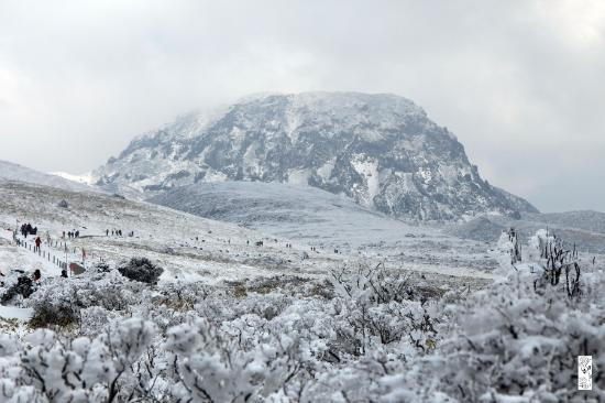 Hallasan National Park: 윗세오름 남벽분기점
