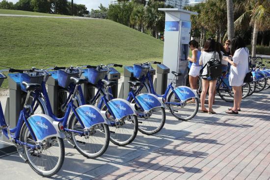 Citi Bike Miami >> Miami Beach Location De Velos Citibike Picture Of Citibike