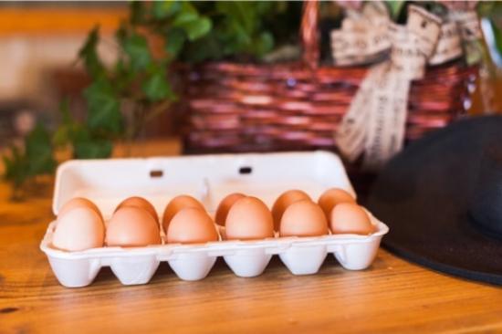 Mineola, TX: Fresh Eggs
