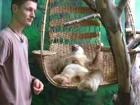 Aviarios del Caribe Sloth Sanctuary صورة فوتوغرافية