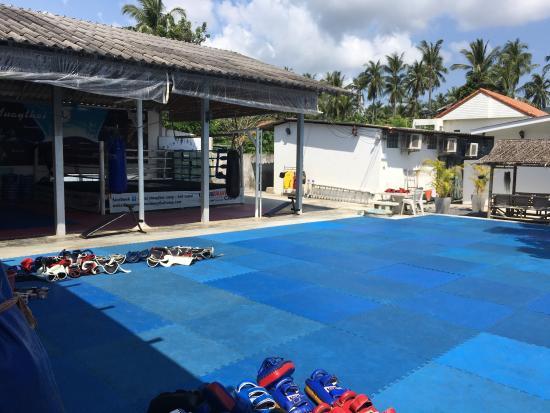 Lamai Muay Thai Camp