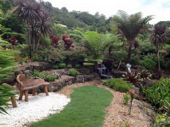 Maleny, Αυστραλία: Cool bench