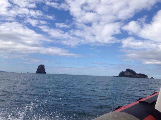 Whitianga, نيوزيلندا: photo8.jpg