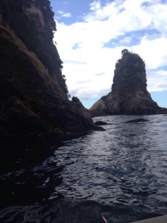 Whitianga, نيوزيلندا: photo9.jpg