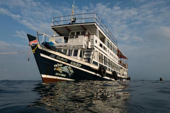 Diving On Koh Tao : Diving with Big Blue Resort