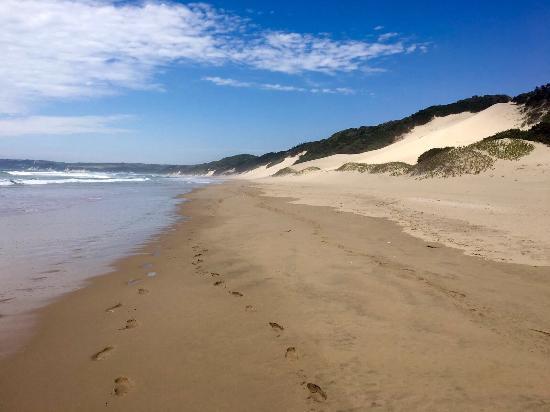 Chintsa, แอฟริกาใต้: photo3.jpg