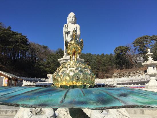 Daegu, Sydkorea: photo0.jpg