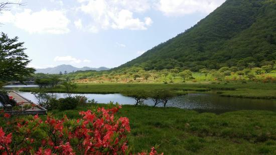 Gunma Prefecture, Japan: 六月 大沼近辺