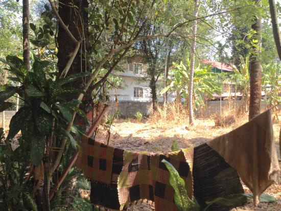 Jickys Nest: back garden