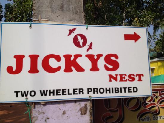 Jickys Nest Photo