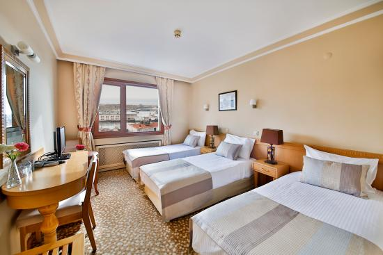 Sidonya Hotel : Trp Room