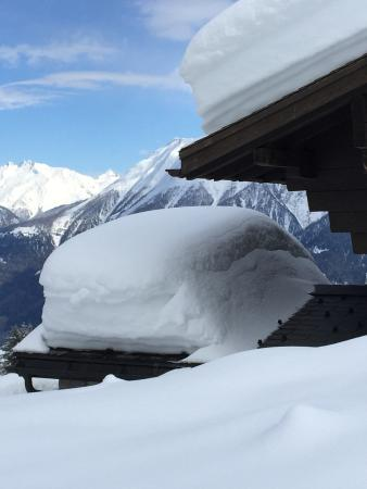 Riederalp, İsviçre: Adonis Et Bellis