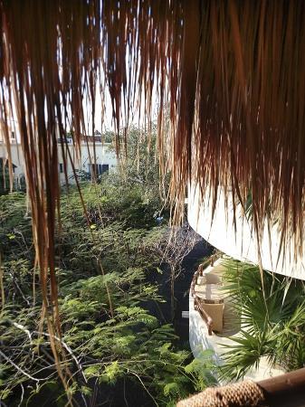 Maya Villa Condo Hotel & Beach Club: view from penthouse