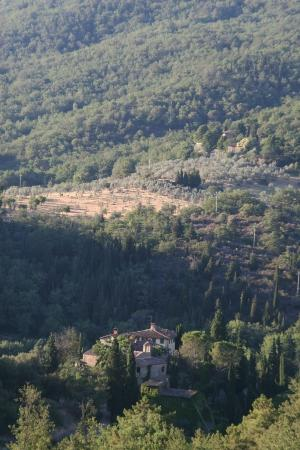 Greve in Chianti, Italien: View from across the road