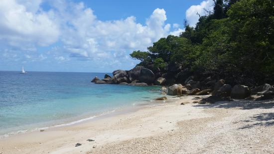 Fitzroy Island, Avustralya: Nudey Beach