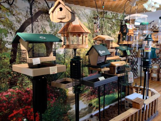 Madison, CT: We offer a great selection of bird feeders, and priced for any pocketbook.