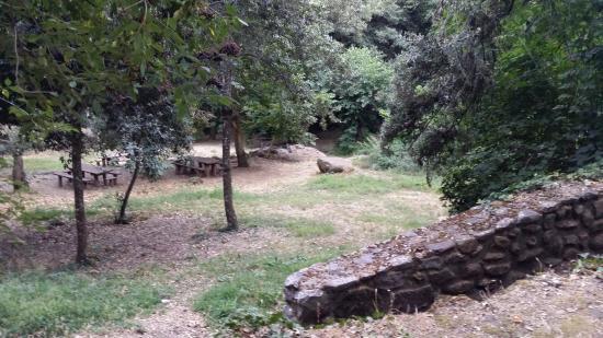 Santu Lussurgiu