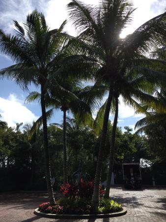 Parrot Key Hotel and Resort: Um charme!! Adorei!